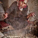 Qu'est-ce que la sériciculture ? Comment on fait de la soie ? définition