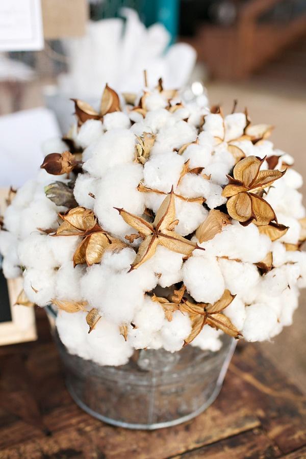Comment prendre soin du coton