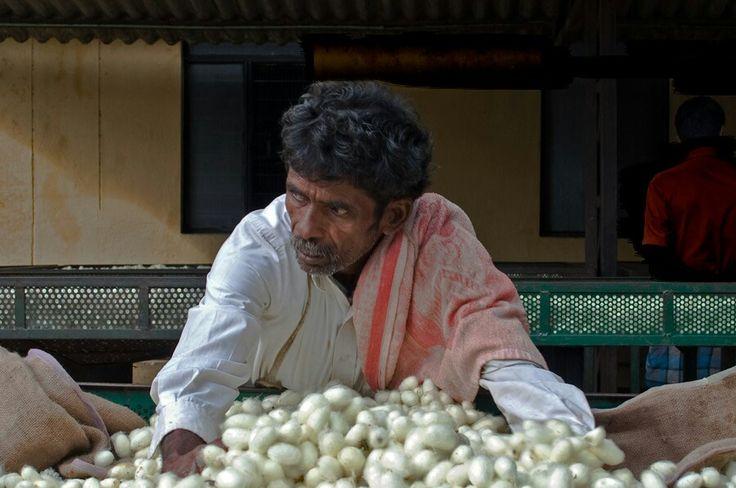 cocon de soie - artisanat soie